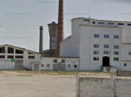 Parc industrial Caransebes, Caras-Severin