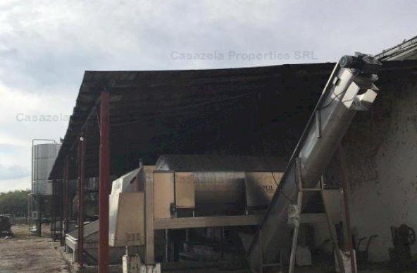 CLADIRI SI TEREN AFERENT S. 19.726,80 mp - CIRESU, BRAILA