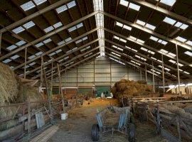 Teren cu grajd construit pentru animale com. Ceanu Mare
