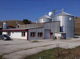 ferma agrozootehnica (complex crestere porci) sat Dacia, jud. Brasov