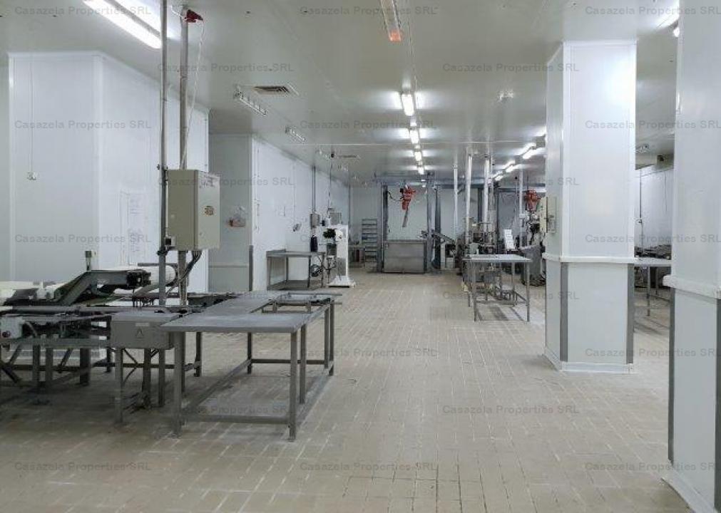 Spatiu industrial- fosta fabrica de prelucare  si conservare a pestelui si a produselor din peste