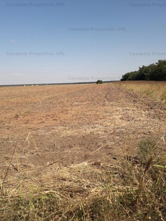 teren agricol extravilan Comuna Mihai Bravu, Jud Giurigu