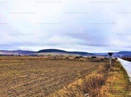 Teren extravilan-arabil 5.810 mp, Herina - Bistria-Nasaud