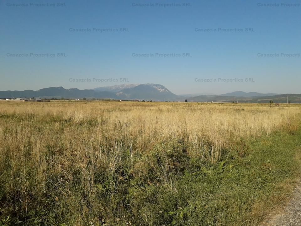 Teren extravilan agricol 18.200 mp, Rasnov, Jud. Brasov