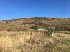 Teren de vanzare (licitatie) 624 mp str. Apusului, Piatra Neamt
