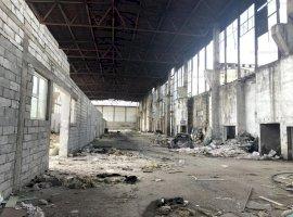 Hala industriala - Baia Mare, str. Vasile Lucaciu