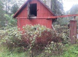Casa vila de vacanta Lunca Bradului Mures