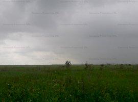 Teren extravilan agricol 14.516 mp, Ghiroda, Jud. Timis