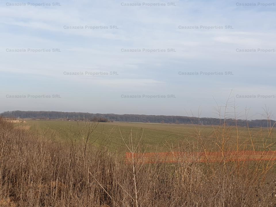 Teren extravilan 15.217 mp, Afumati, Jud. Ilfov