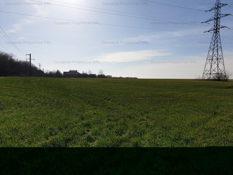 Teren extravilan arabil 27.000 mp, Schitu, Costinesti