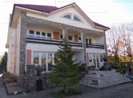 Vanzare vila de 9 camere, teren 4681 mp in Clinceni, judetul Ilfov