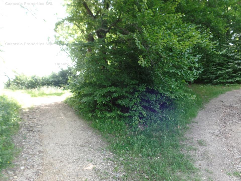 Teren intravilan, livada, in suprafata de 4.230 mp - Brasov, Calea Poienii, km 5, Jud. Brasov