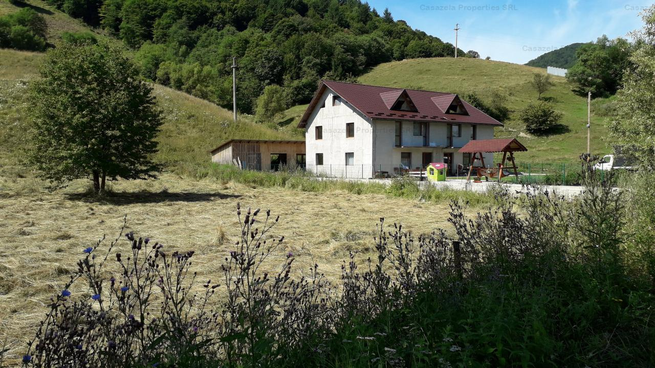 3 hectare in Abrud