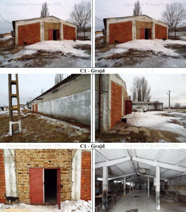 teren intravilan s=6919 mp si 4 grajduri animale situate in Tulucesti
