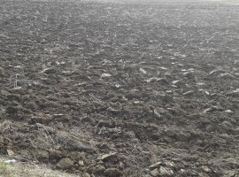 Teren in suprafata de 8312 mp situat in Vintu de Jos, Alba