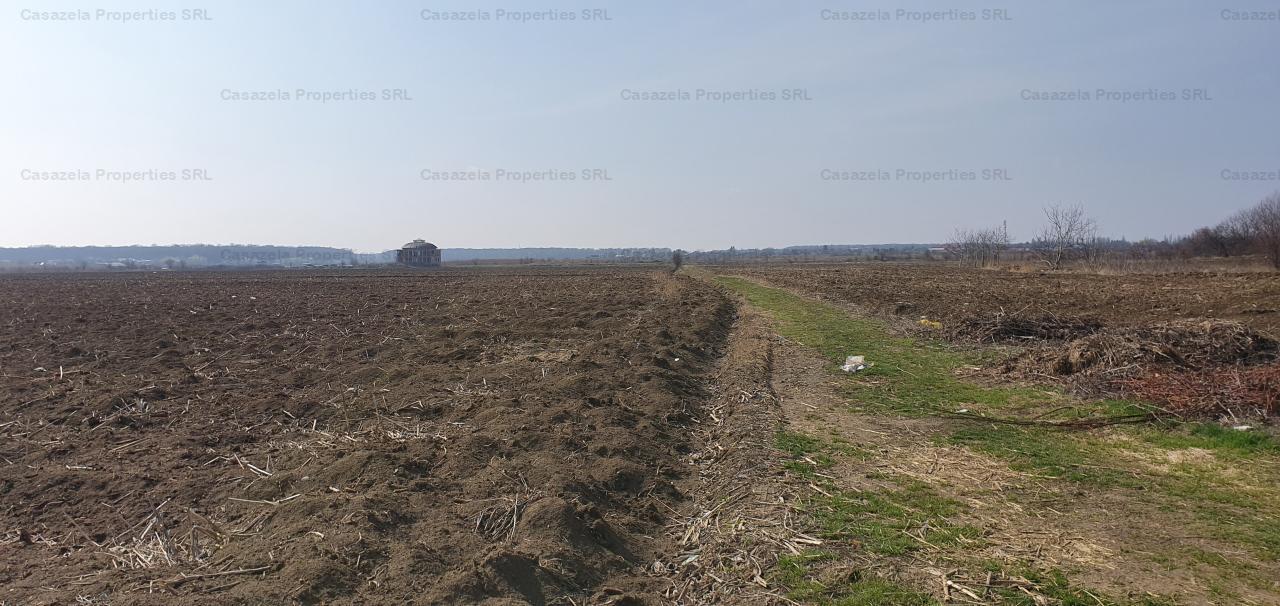 Teren agricol, Silistea Snagovului, Gruiu - 734 mp ( langa cimitir )