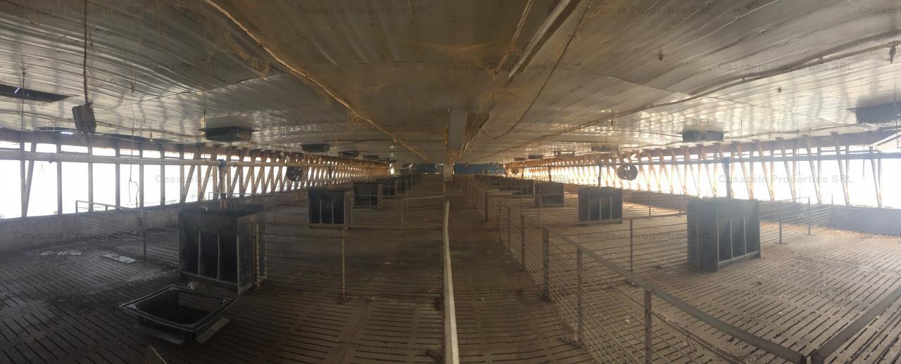Spatiu industrial- ferma de porci si echipamente