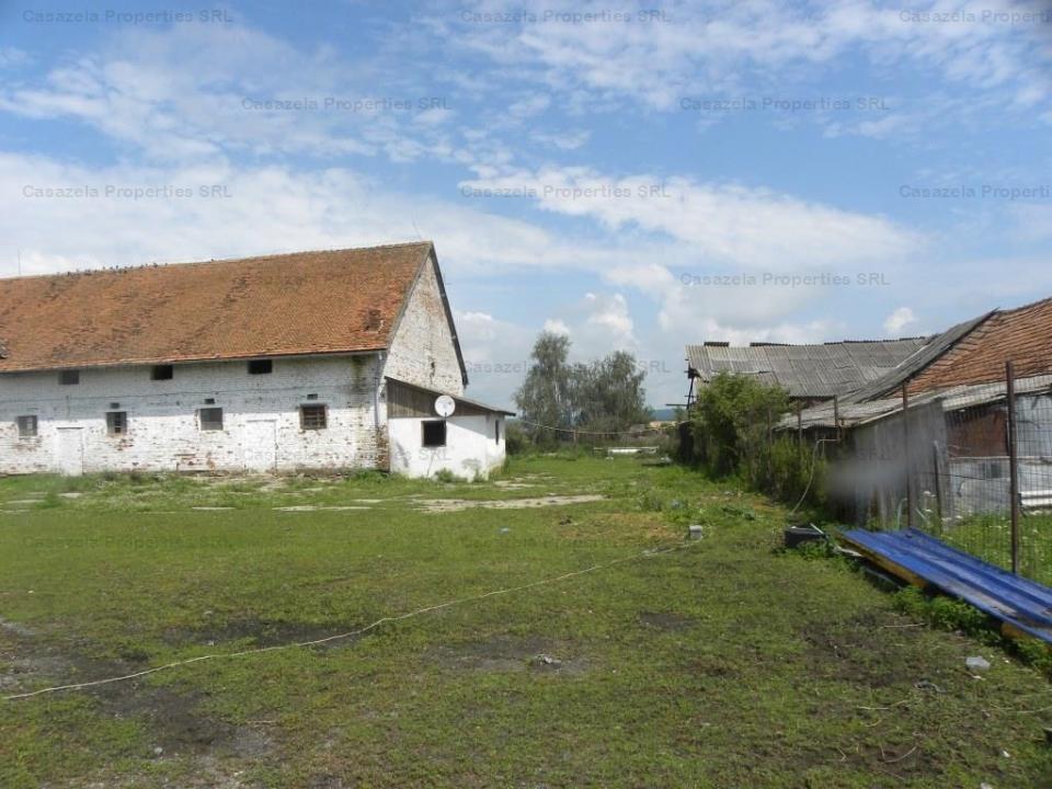 Grajd crestere suine si teren in suprafata de 6.100 mp localitatea Sercaia