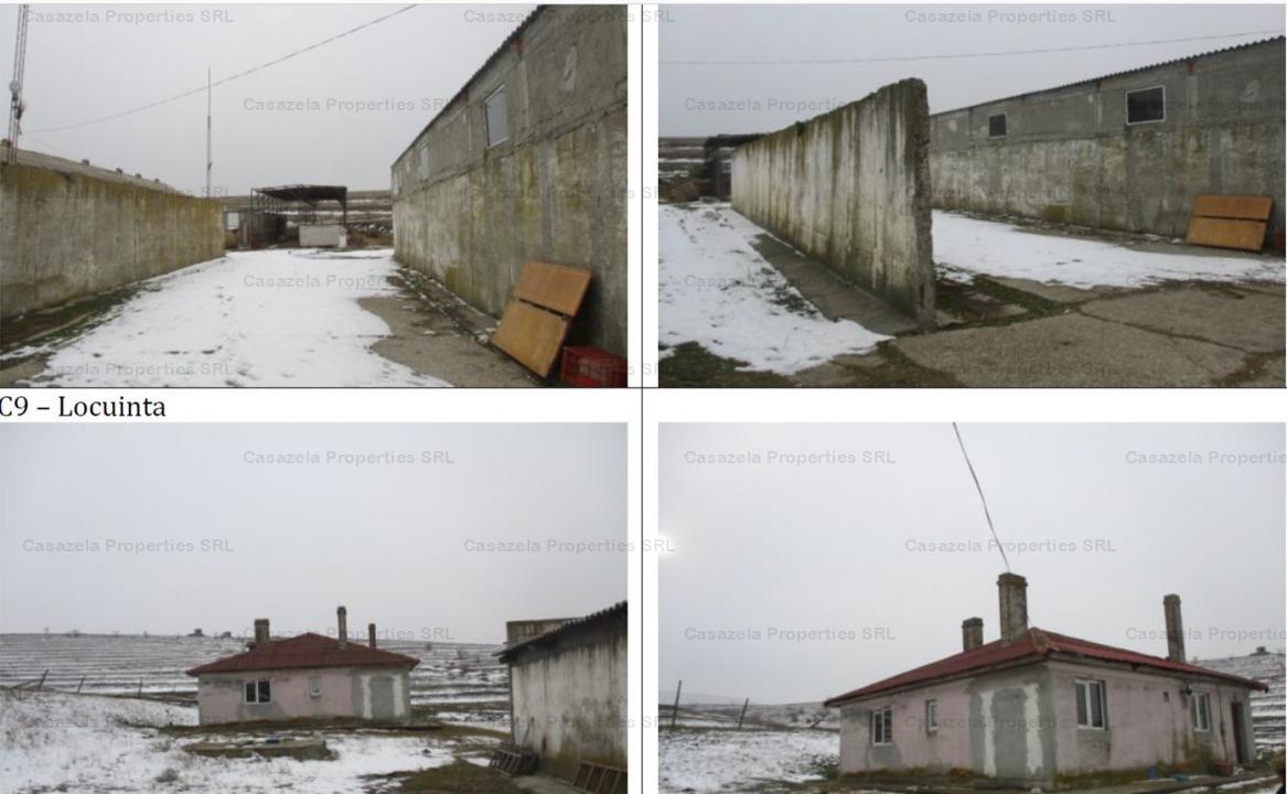 Spatiu industrial 6696mp localitatea Tortoman, Judet Constanta