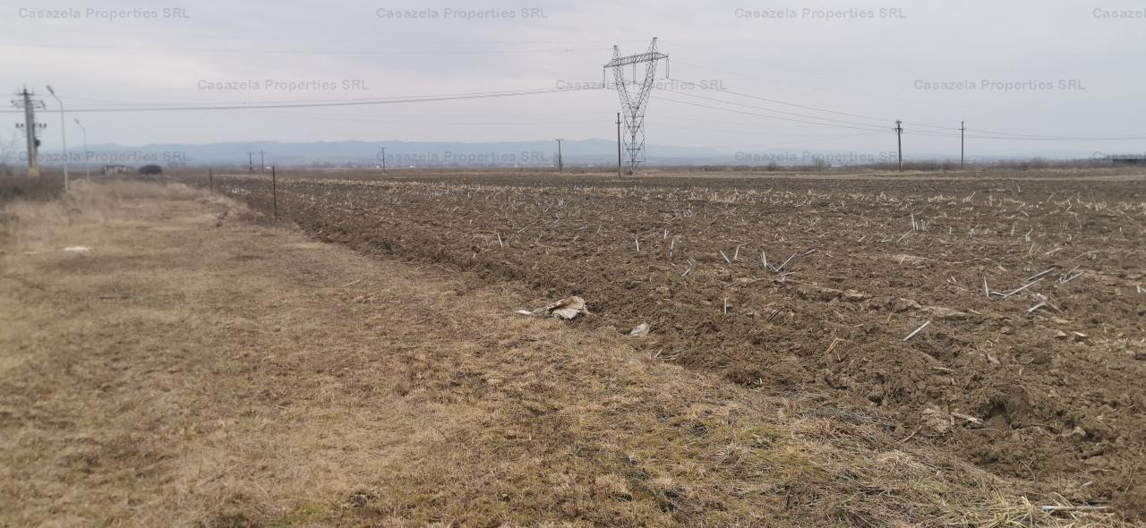 teren extravilan s=2425 mp situat la iesirea din Oniceni, jud Suceava