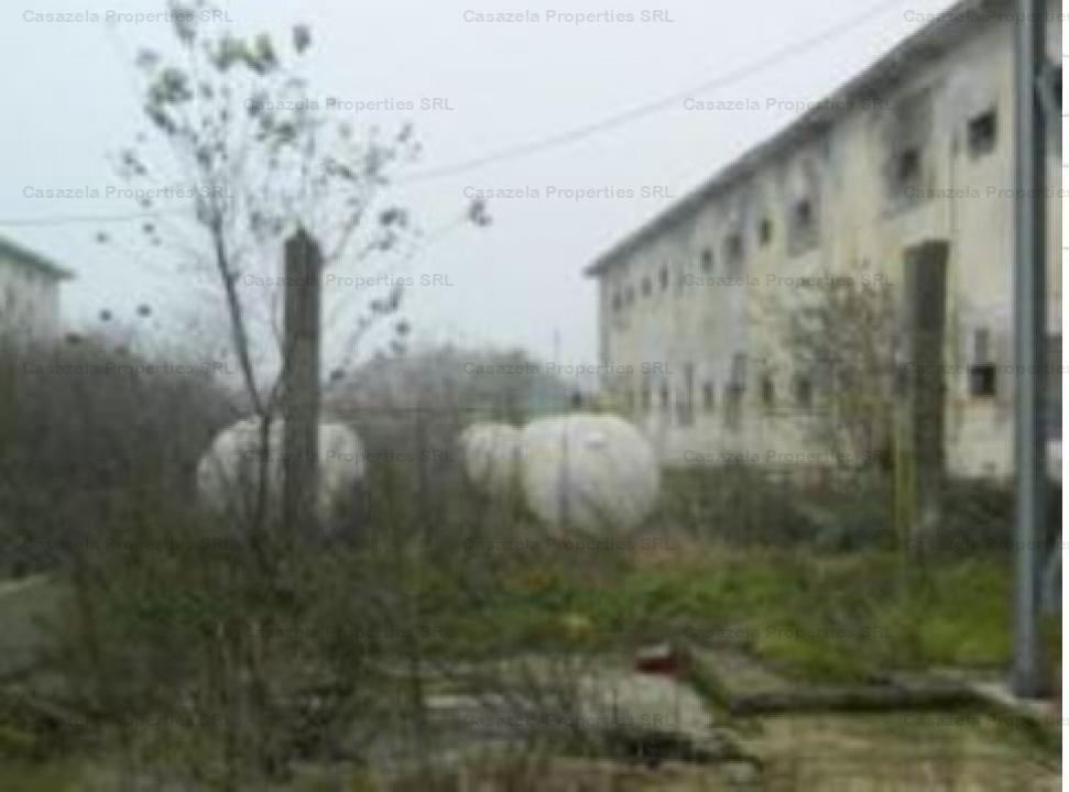 Vanzare platforma agroindustriala, teren de 25,712 mp, Topraisar - jud. Constanta