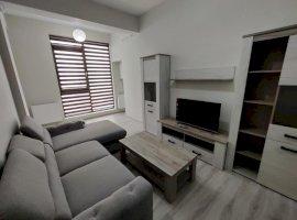 Apartament cu 2 camere mobilat si utilat, etajul 1, zona Doamna Stanca