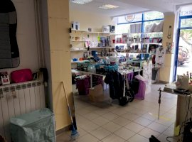 Afacere la cheie de vanzare  in Valea Aurie- Sibiu
