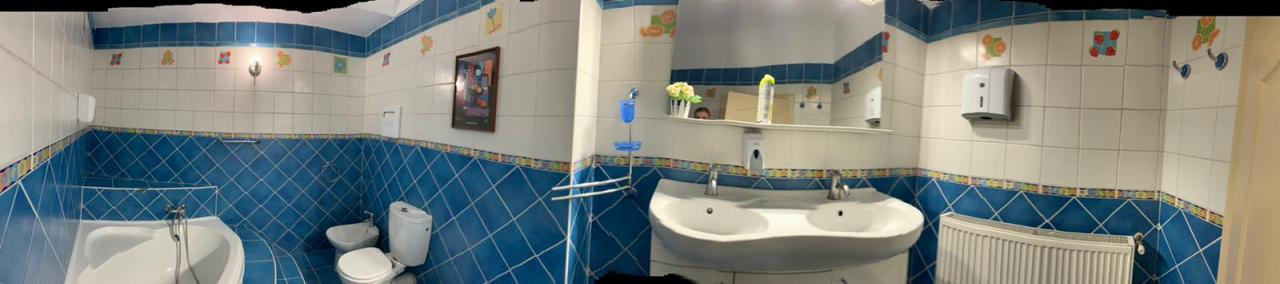 Casa Vila 8 camere Dorobanti