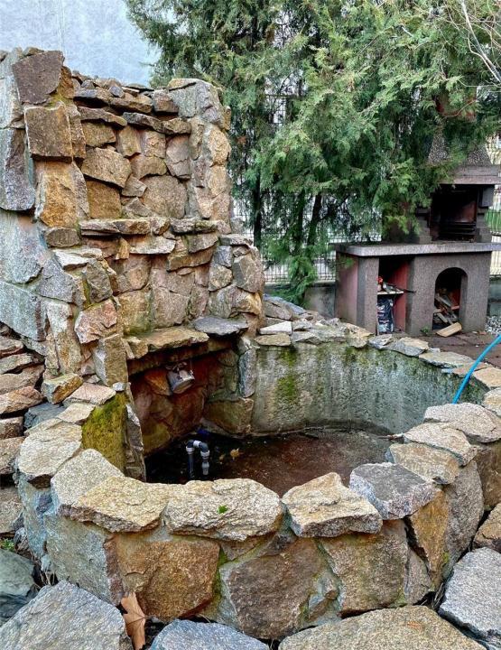 Duplex 6 camere Herastrau (vila)