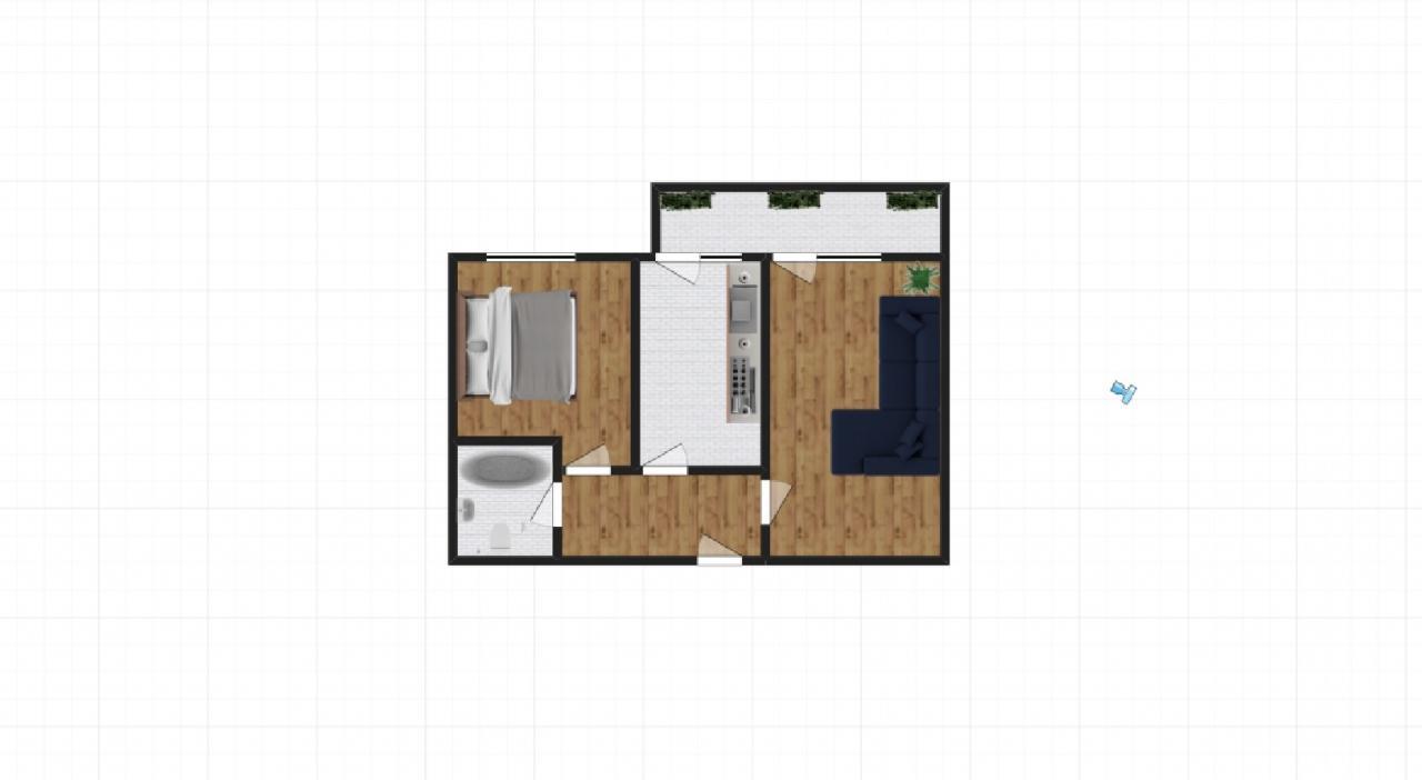 Dezvoltator- 2 camere