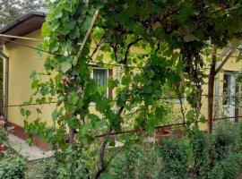 Vanzare casa  in zona Olteni