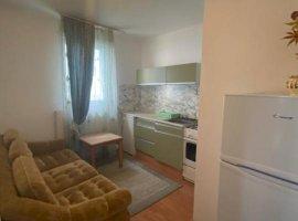 Apartament 1 camera Lipovei