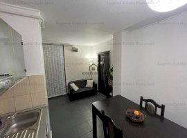 Apartament 2 camere renovat zona Teiul Doamnei