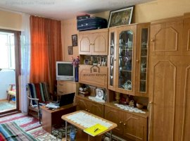 Apartament cu 1 camere de vânzare în zona Badea Cartan