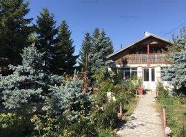 Casa in Domnesti, P+1+Pod, suprafata 200mp, teren 1500mp, utilitati, acces din strada asfaltata