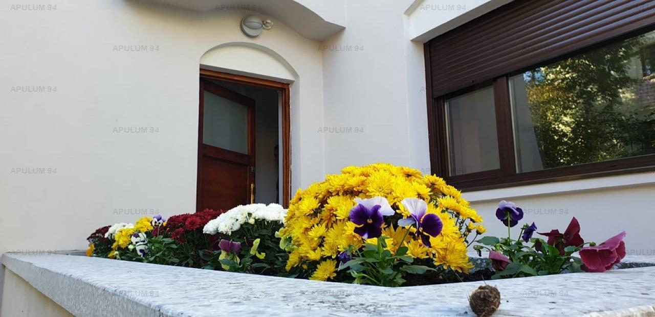 Vila Splendida Floreasca