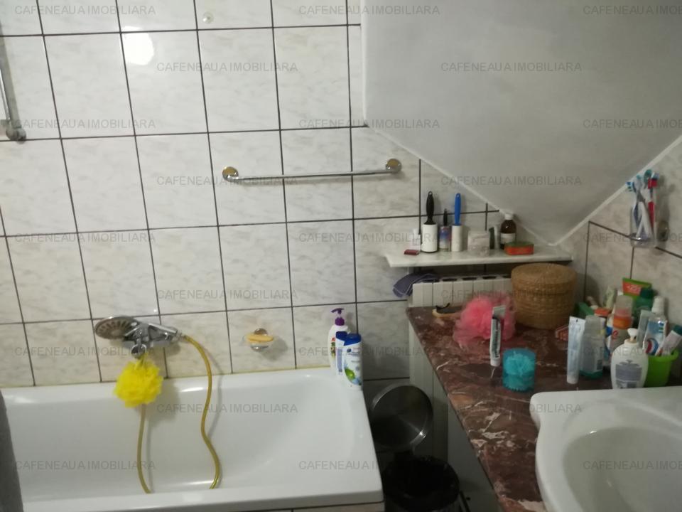 Vanzare vila Tei-Parcul Circului