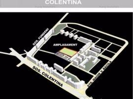 Teren Colentina