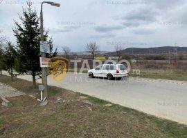 Teren 18151 mp deschidere la DN1 de vanzare Parcul Industrial Selimbar
