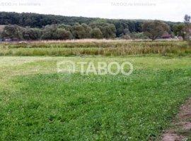 Teren 5000 mp de vanzare deschidere 25 metri in Cisnadie judetul Sibiu