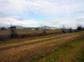 Branesti/ Makita, teren intravilan 3000 / 6000 mp, ideal constructii industriale