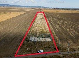 Teren intravilan pentru proiecte agricole