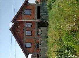 Vanzare  casa  7 camere Timis, Nitchidorf  - 50000 EURO