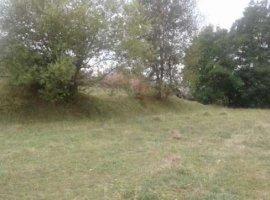 Vanzare  terenuri constructii  3800 mp Arges, Bilcesti  - 0 EURO