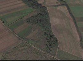 Vanzare  terenuri constructii Arges, Lunca Corbului  - 11000 EURO