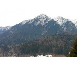 Inchiriere  terenuri constructii Brasov, Zarnesti  - 0 EURO lunar