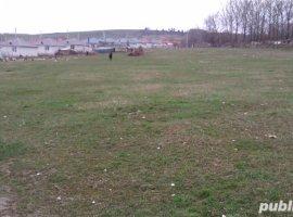 Vanzare  terenuri constructii  16.5 ha Iasi, Dorobant  - 0 EURO