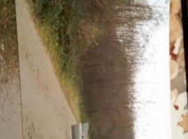 Vanzare  terenuri constructii  50 ha Valcea, Milcoiu  - 0 EURO