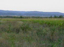 Vanzare  terenuri agricol Valcea, Raureni  - 0 EURO
