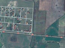 Vanzare  terenuri constructii Timis, Beregsau Mare  - 8 EURO